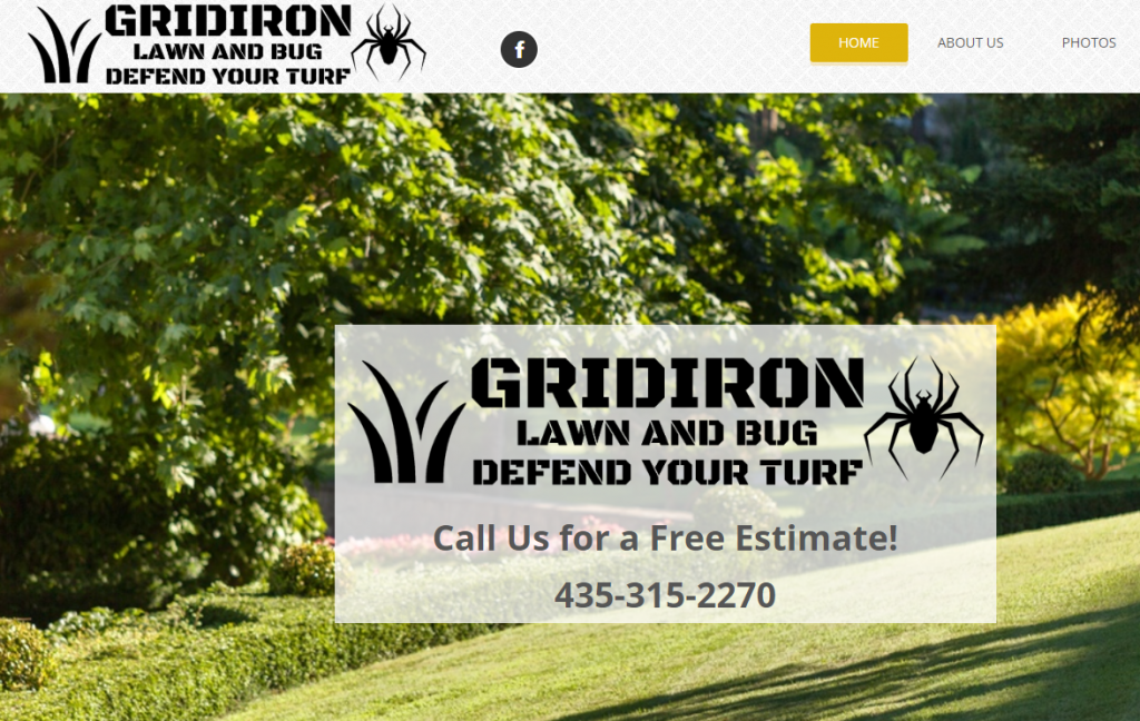 Grid Iron Lawn and Bug
